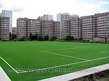 Искусственные покрытия для футбольных полей, фото 4