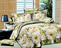 Двуспальный комплект постельного белья Утренний пейзаж