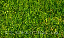 Штучна трава Limonta SoccerPro MF DIAMOND