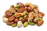 Смаження насіння і горіхів на електриці 30 кг/год, фото 3