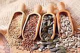 Смаження насіння і горіхів на електриці 30 кг/год, фото 2