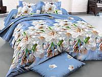 Двуспальный набор постельного белья Ранфорс №181