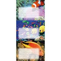 Наклейки на тетради Рыбки