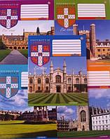 Тетрадь 18 листов клетка Cambridge History-16 794044 Зошит України