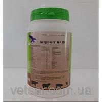 Интровит А+ВП (Introvit A+ ws ), 1 кг - комплекс витаминов,минералов и аминокислот ( Интерхеми)