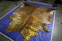 НОВИНКА! Телячья кожа с затиранием ворса золотой краской