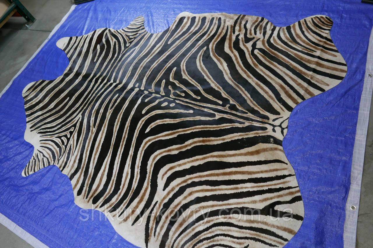 Шкура коровы крашенная в реальную расцветку африканской зебры Бурче́ллова