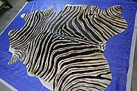 Шкура коровы крашенная в реальную расцветку африканской зебры Бурче́ллова, фото 1