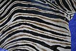 Шкура коровы крашенная в реальную расцветку африканской зебры Бурче́ллова, фото 3