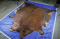Шкура с медным напылением под старину, экзотические напольные шкуры для интерьера, фото 1