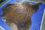 Шкура з мідним напиленням під старовину, екзотичні підлогові шкури для інтер'єру, фото 2