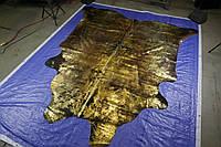 Экзотическая коровья шкура черного цвета с потертостями золотом  Харькове