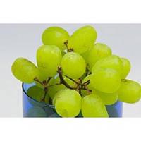 Отдушка Виноград мускатель Лори, 1 литр