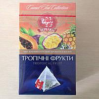 Чай ТМ Верблюд 20 пирамидок с тропическими фруктами