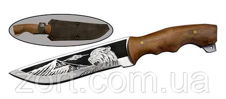 Нож с фиксированным клинком Хазар, фото 2