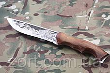 Нож с фиксированным клинком Хазар, фото 3