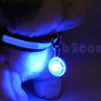 Светящийся брелок с карабином на ошейник, синий