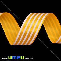 Атласная лента в полоску, 25 мм, Оранжевая, 1 м (LEN-016700)