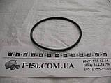 Кольцо уплотнительное гильзы Камаз, Т-150 (черное), фото 2
