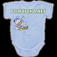 Детский боди-футболка р. 56 ткань КУЛИР 100% тонкий хлопок ТМ Алекс 3087 Голубой3