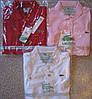 LACOSTE 5 пуговиц женские футболки поло лакоста лакосте купить в Украине.