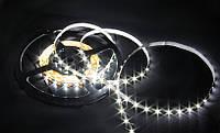 Лента светодиодная FERON LS603/ SANAN LED-RL 60SMD(3528)/m 4.8W/m 12V 5m*8*0.22mm белый