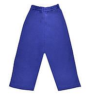 Штаны (брюки ясельные)  (Синий)