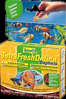 Tetra FreshDel дафния 48г - лакомство в виде желе для рыб