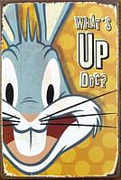 Ретро табличка металлический постер What's Up Doc?