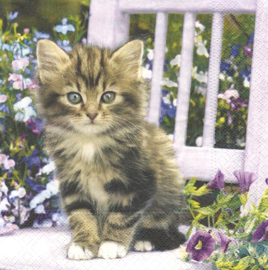 Салфетка декупажная Котёнок на стуле 5870