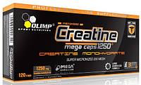 Olimp. Creatine Mega Caps 120k