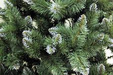 Елка Европейская с шишками Белые кончики 1.5 м ель ели ёлка ёлки елка елки сосна штучна ялинка ялинки сосни, фото 3