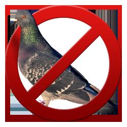 Борьба с птицами
