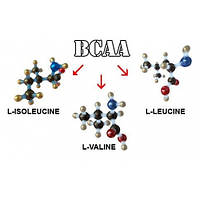 BCAA 2:1:1 Extra Pure (500 г)