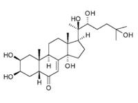 Экдистерон в капсулах 90% 400мг (60 капс)