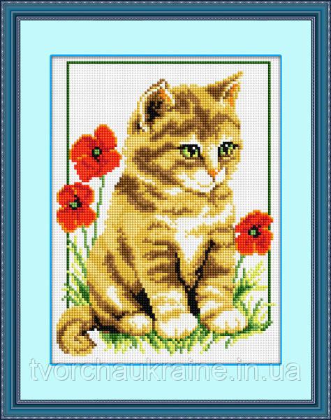 "Набор для рисования камнями (холст) ""Котик среди маков"" LasKo"