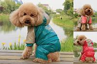 """Комбинезон для собак """"Voyage"""" ТМ DOBAZ. Одежда для собак."""