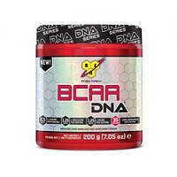 BSN DNA BCAA 200g
