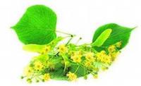 Отдушка Липовые цветы 1л / 2л