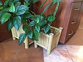 Вазоны, кашпо бамбуковые