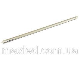 Лампа светодиодная 13Вт CW матовая T8M-2835-0.9S 13CW 7000K