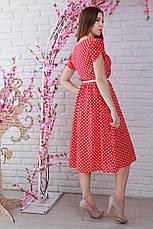 Яркое молодежное стильное платье в горошек с поясом, фото 2