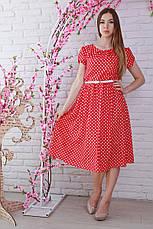 Яркое молодежное стильное платье в горошек с поясом, фото 3