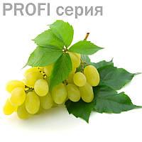 Виноградная косточка (базовое/жирное масло) Vitis vinifera  100мл