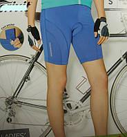 Велошорты женские CRIVIT с 3D памперсом 1,5см (S) 36-38