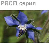Масло Бурачника (базовое/жирное масло) Borago officinalis  5мл