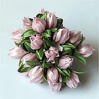 Тюльпан св.-розовый