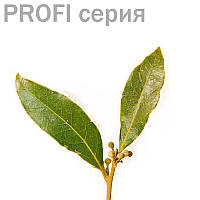 Эфирное масло Бэй Myrtaceae  5 мл