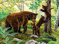 Раскраска по цифрам 30×40 см. Медвежата на прогулке , фото 1