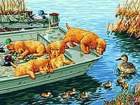 Набор для рисования 30×40 см. Любопытные щенки